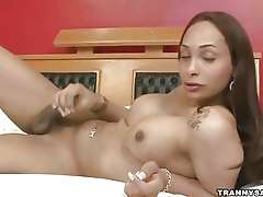 Sexy latina shemale honey tugging on her hard cock