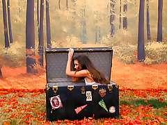 Playboy Video Playmate Calendar 2006 - Jamie Westenhiser