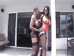 Sexy Black BBW Busty Lesbians