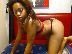 Adult video ebony sex-chat