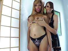 Black tgirls tug each others cock Black tgirls tug each others cock and cant get enough