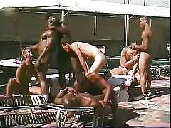 poolside gay sex party orgy