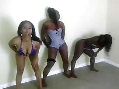 3 Afro-black american girlfriends