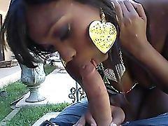 Imperceptive Black Catholic Ebony Star