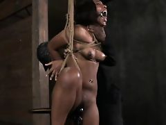 Ebony submissive toyed in restraints